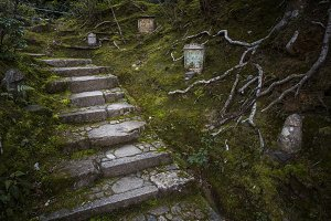 Pathway in Kyoto