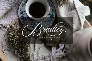 Scarlett | Elegant Calligraphy Font