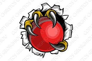 Cricket Ball Eagle Claw Talons
