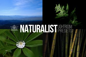 Naturalist Lightroom CC Preset Pack