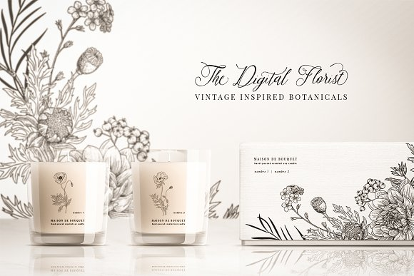 Vintage Botanical Illustrations in Illustrations - product preview 16