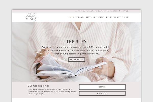 WordPress eCommerce Themes ~ Creative Market