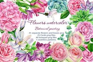 flowers, botanical painting
