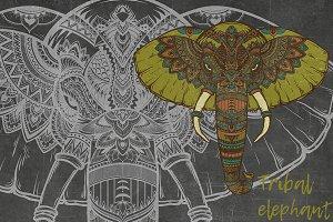 Hindy tribal elephant