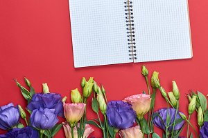 open notebook  on a red background