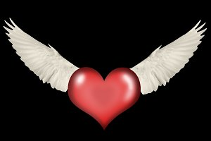 heart with wings on a black