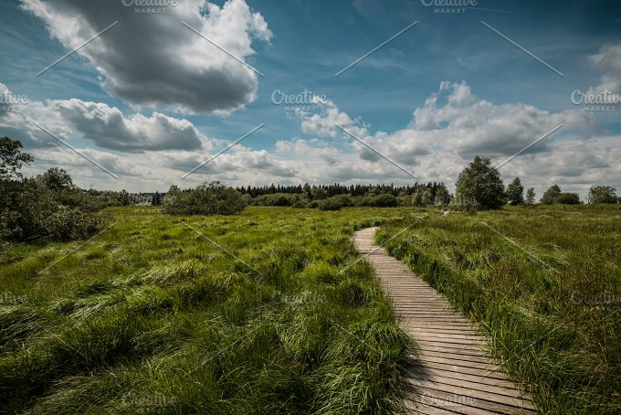 Hiking in Belgium... - Nature