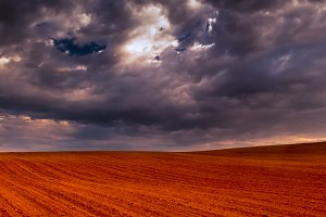 Crop field and stormy sky II