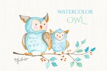 owl - watercolor illustration