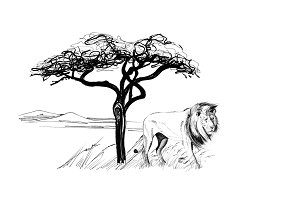 Lion male near a tree in africa. Han