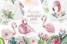 Tropical Flamingo collection