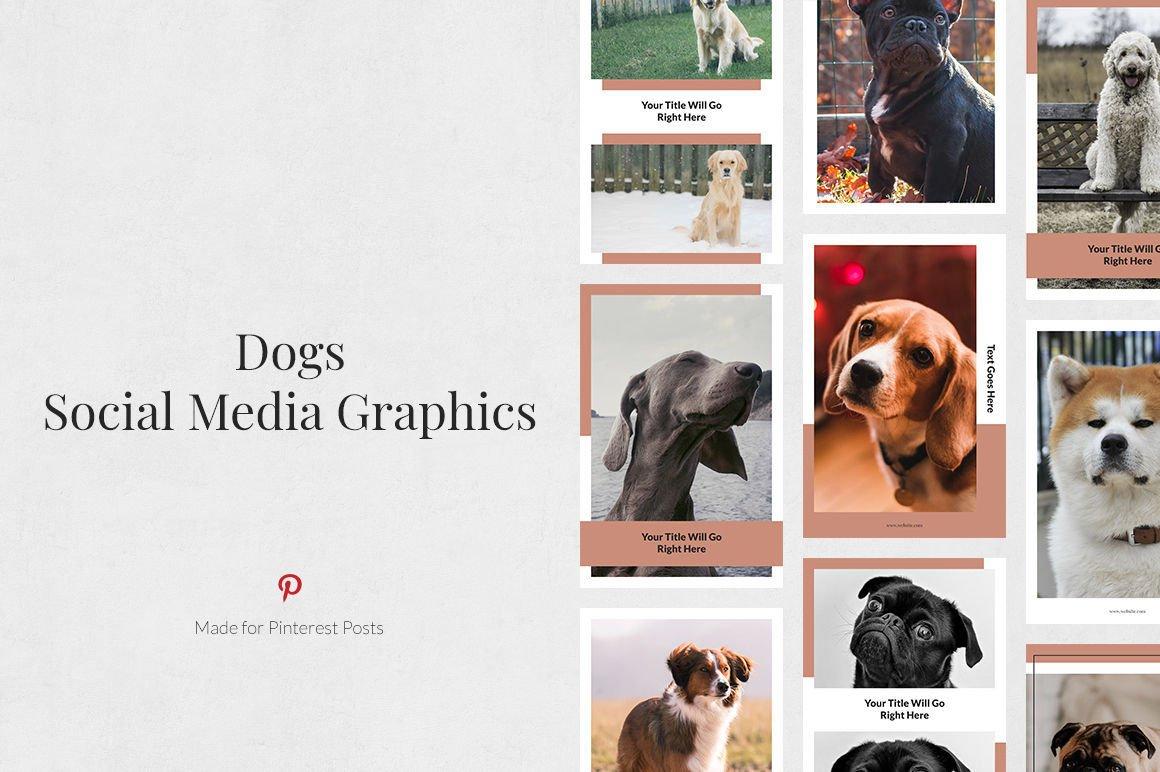 Dogs Pinterest Posts