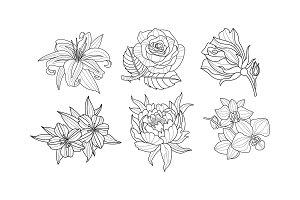 Vector set of beautiful hand drawn