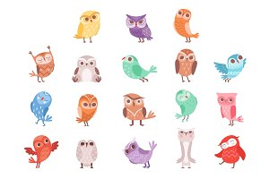 Cute cartoon colorful owls set
