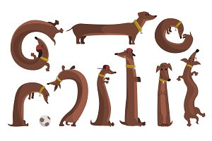 Dachshund dog set, cute funny long