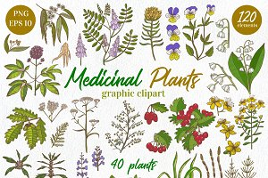 Medicinal Plants graphic collection