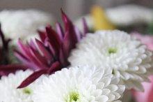 Flowers No. 1