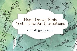 Vector Bird Line Art Illustrations