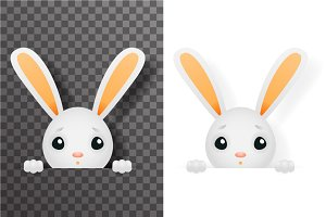 Isolated easter cute bunny rabbit