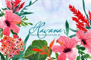 Havana- Watercolor Clip Art