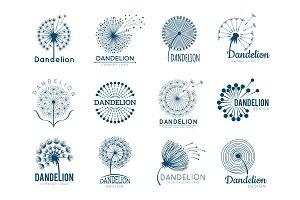 Botany dandelion logo. Herbal leaves