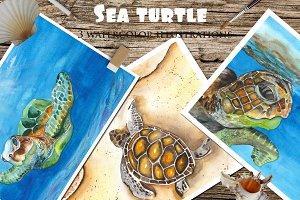 Sea turtles. Watercolor landscapes.