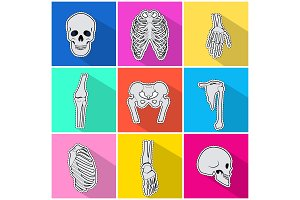 Skelet Icons. Types of Bones on