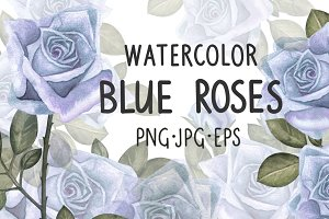 Watercolor blue roses flowers