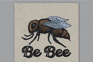 Be Bee ink illustrated