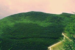 Mountain in summer