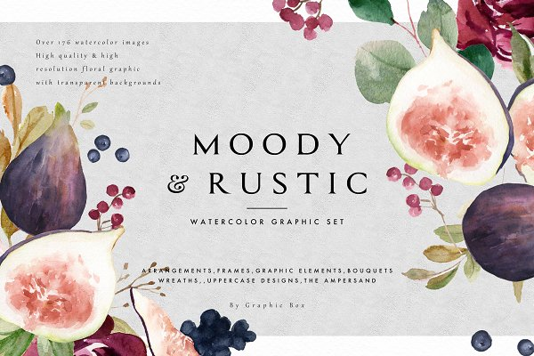 Illustrations: Graphic Box - Moody&Rustic-Watercolor Graphic Set