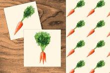 Carrots set. Watercolor +seamless