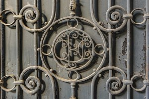 Iron Ornate Door Detail