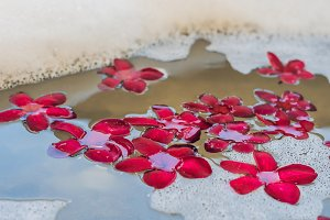 Red frangipani flowers in the spa