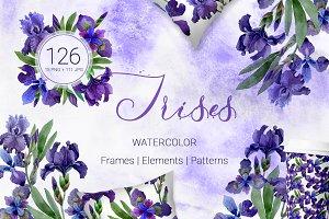 Irises  Gentle Watercolor png