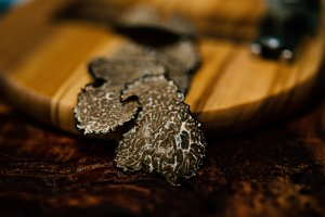 mushrooms black truffle on on a wood