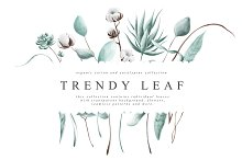 Trendy Leaf Collection