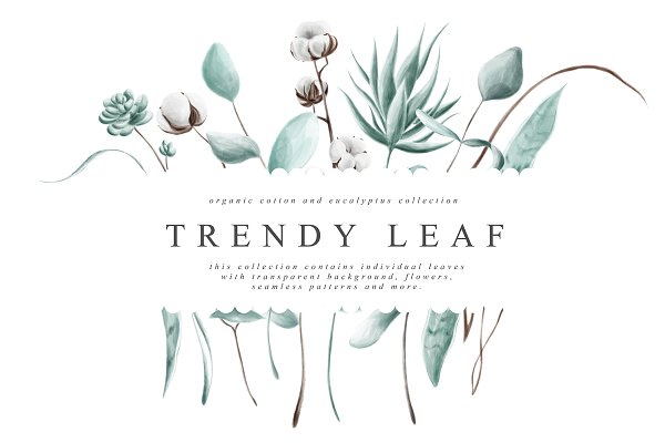 Illustrations: Julia Dreams - Trendy Leaf Collection