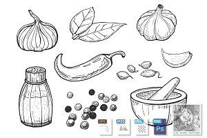 illustration of spices set