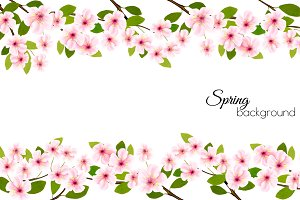 Spring nature frame with cherry