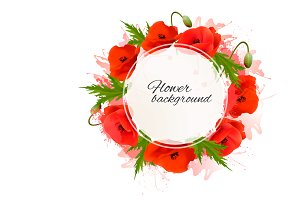 Flower background with red poppies