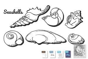 Sea mollusk seashells set