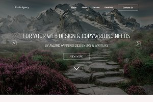 Agency Website PSD 6 Pages