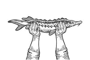 Hands with fish engraving vector