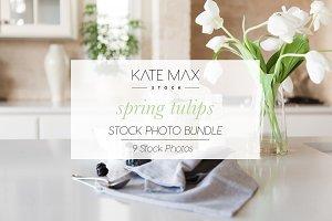Spring Tulips Stock Photo Bundle