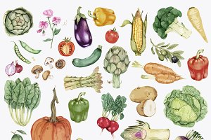 Collection of colorful vegetable