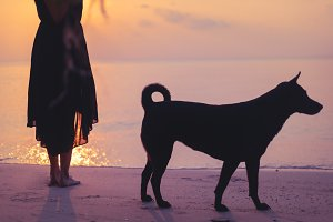 Silhouette of  dog and girl
