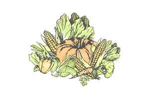 Fresh Vegetables Set on White in
