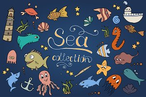 50%OFF Sea Colection
