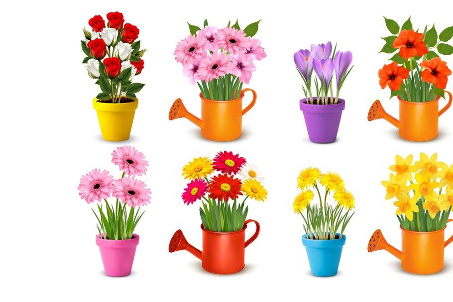 Mega Collection Of Flowers In Pots Custom Designed Illustrations